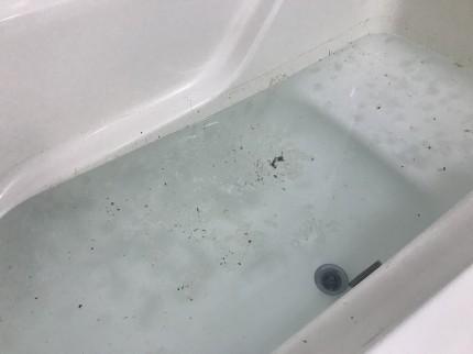 浴室追い炊き配管除菌クリーニング