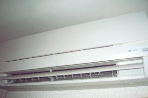 P1080665-300x200
