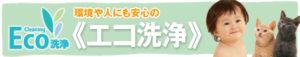 banner-ecosenjyo-300x57